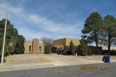 Albuquerque Single Family Home For Sale: 4305 Chinlee Avenue NE