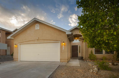 Albuquerque Single Family Home For Sale: 4267 Ridingcircle Drive NW