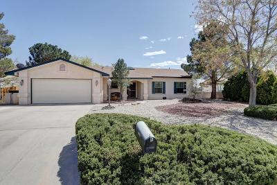 Rio Rancho Single Family Home For Sale: 3100 Jane Circle SE