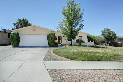 Albuquerque Single Family Home For Sale: 7338 Ticonderoga Road NE