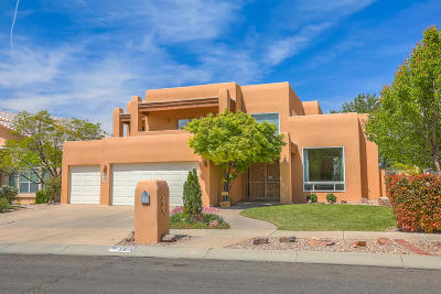 Albuquerque Single Family Home For Sale: 5515 Camino Arbustos NE
