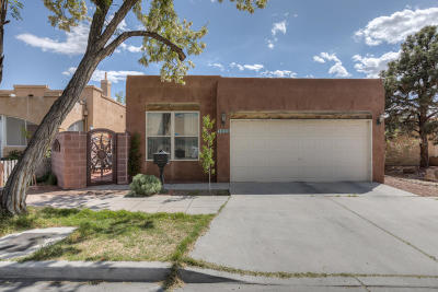 Albuquerque Single Family Home For Sale: 1008 Tijeras Avenue NW
