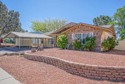 Albuquerque Single Family Home For Sale: 11520 Riviera Road NE