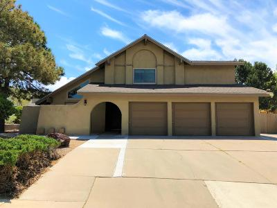 Bernalillo County Single Family Home For Sale: 1532 Stagecoach Lane SE