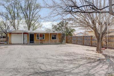 Albuquerque Single Family Home For Sale: 5102 San Luis Place NW