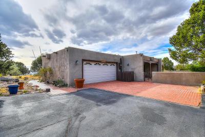 Sandia Heights Single Family Home For Sale: 1455 Bluebell Drive NE