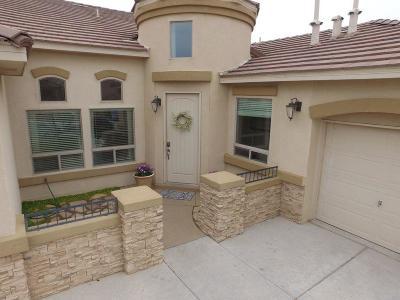 Rio Rancho Single Family Home For Sale: 1102 Desert Broom Road NE