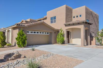 Albuquerque Single Family Home For Sale: 8827 Valle Prado Lane NW
