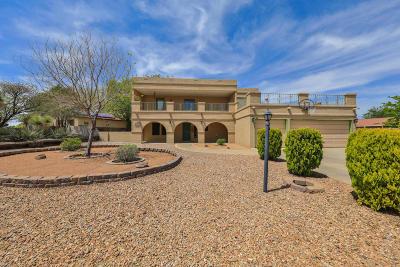 Albuquerque, Rio Rancho Single Family Home For Sale: 980 Player Loop SE