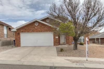 Albuquerque Single Family Home For Sale: 4531 Agate Hills Road NW