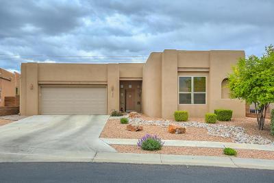 Bernalillo County Single Family Home For Sale: 7424 Enchanted Sky Lane NE