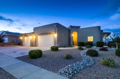 Albuquerque Single Family Home For Sale: 4617 Butler Avenue NW