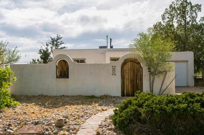 Albuquerque Single Family Home For Sale: 1629 Cornell Drive SE