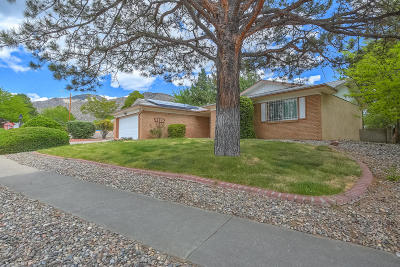 Albuquerque Single Family Home For Sale: 12220 Palm Springs Avenue NE