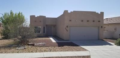 Albuquerque Single Family Home For Sale: 3200 Rio Maria Drive SW