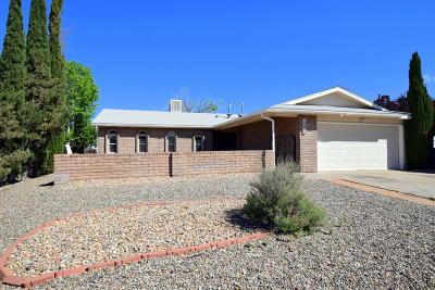 Single Family Home For Sale: 6407 Christy Avenue NE