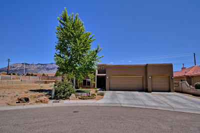 Albuquerque NM Single Family Home For Sale: $615,000