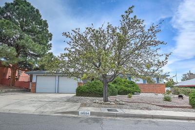 Albuquerque Single Family Home For Sale: 14204 La Cueva Avenue NE