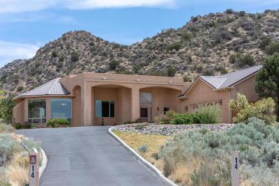 Single Family Home For Sale: 14 Desert Sky Road SE