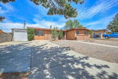 Albuquerque Single Family Home For Sale: 12501 Conejo Road NE