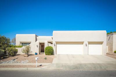Bernalillo County Single Family Home For Sale: 8401 Petaluma Drive NE