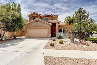 Albuquerque Single Family Home For Sale: 6208 Chenoa Road NW