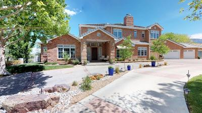 Albuquerque Single Family Home For Sale: 11817 Baccarat Lane NE