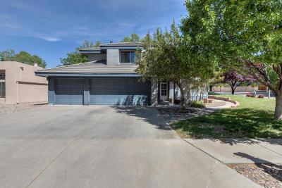 Albuquerque Single Family Home For Sale: 8605 Canyon Run Road NE