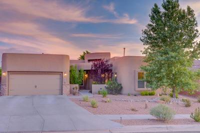 Albuquerque, Rio Rancho Single Family Home For Sale: 2816 Abeto Lane SE