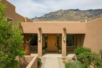 Albuquerque Single Family Home For Sale: 370 Big Horn Ridge Drive NE