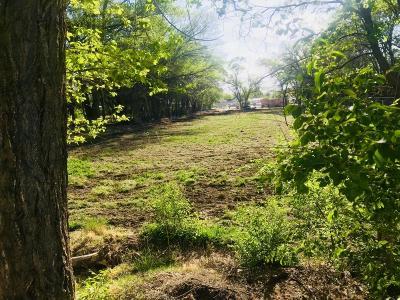 Albuquerque Residential Lots & Land For Sale: 7202 Isleta Boulevard SW