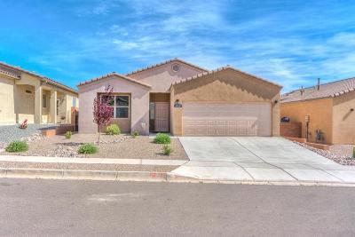 Albuquerque, Rio Rancho Single Family Home For Sale: 3909 Dynamite Road NE