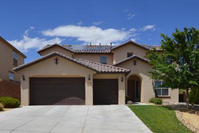 Albuquerque, Rio Rancho Single Family Home For Sale: 3809 Tierra Vista Place NE