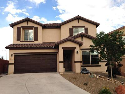 Albuquerque, Rio Rancho Single Family Home For Sale: 160 La Cuesta Court NE
