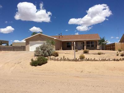 Albuquerque, Rio Rancho Single Family Home For Sale: 1741 16th Avenue SE