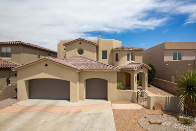 Albuquerque Single Family Home For Sale: 9908 Buckeye Street NW