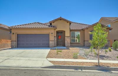 Albuquerque, Rio Rancho Single Family Home For Sale: 2732 Bayas Road SE