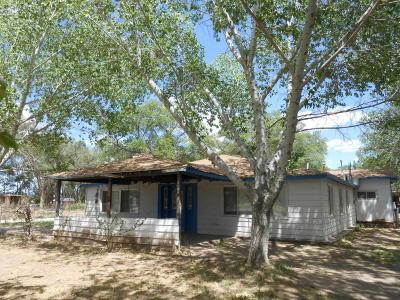 Albuquerque Single Family Home For Sale: 6640 Isleta Boulevard SW