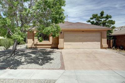 Albuquerque Single Family Home For Sale: 10419 Andretti Avenue SW