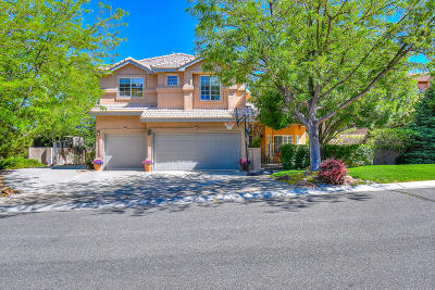Bernalillo County Single Family Home For Sale: 12113 Summer Wind Place NE