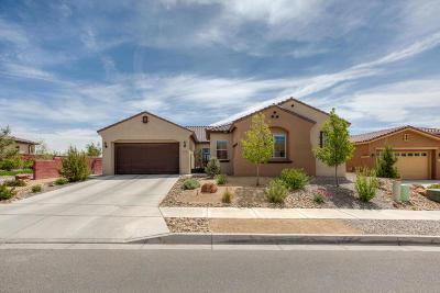 Rio Rancho Single Family Home For Sale: 714 Sierra Verde Way NE