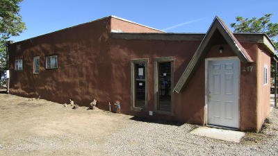 Albuquerque Single Family Home For Sale: 219 Englewood Drive SE