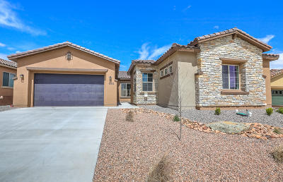Albuquerque Single Family Home For Sale: 9009 Vista Dibujo Road NW
