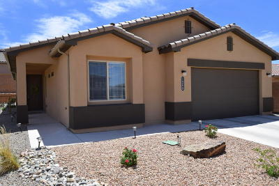 Single Family Home For Sale: 1508 Barbaro Drive SE