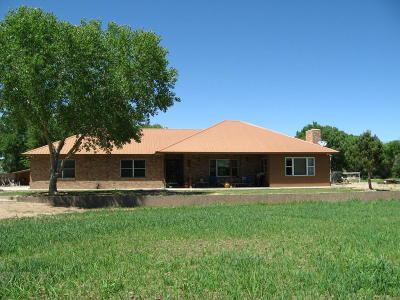 Belen, Los Lunas Single Family Home For Sale: 1229 Molina Road