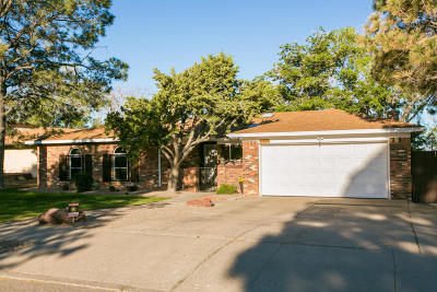 Single Family Home For Sale: 1101 Sagebrush Trail SE