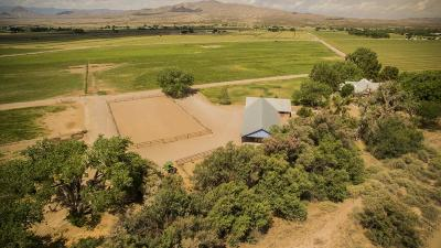 Farm & Ranch For Sale: 742 Hwy 408