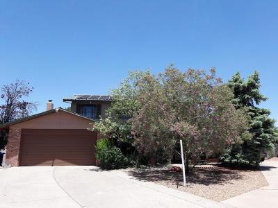 Albuquerque Single Family Home For Sale: 6505 Martin Court NE