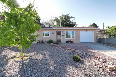 Albuquerque Single Family Home For Sale: 1026 Shirley Street NE