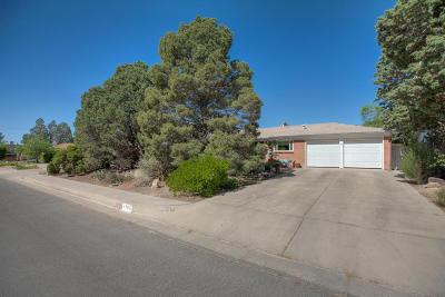 Albuquerque NM Single Family Home For Sale: $233,000
